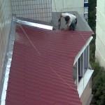 Металлочерепица для установки крыша на балконе
