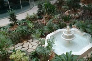 Зимний сад на балконе, как устроить сад на лоджии