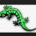 Оконный профиль Salamander, пластиковый профиль, оконные конструкции - Саламандра