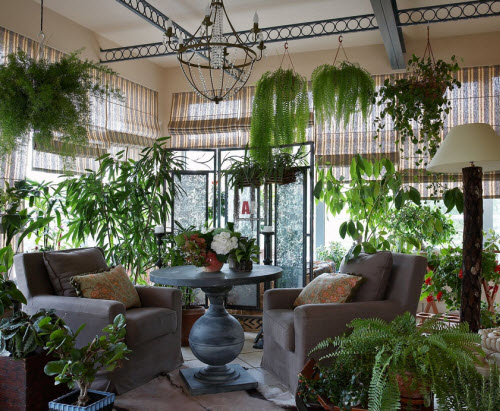 Дизайн зимнего сада растения