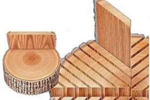 Так распиливают древесину под евробрус