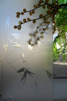Перегородки из стекла с рисунком