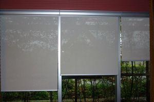 Рулонно-кассетные шторы для пластикового окна