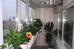 Устройство зимнего сада на балконе